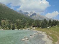 xinluhai-lac-tibet (8)