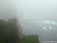 6-mykines-brouillard-oiseaux (1)