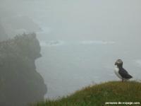 6-mykines-brouillard-oiseaux (3)