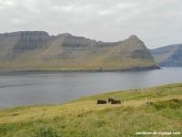 vidoy-randonnee-sommet- Villingardalsfjall (1)