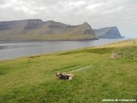 vidoy-randonnee-sommet- Villingardalsfjall (2)