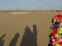 tour en chameau en Iran Yazd