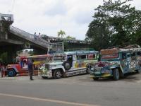 jeepney bohol