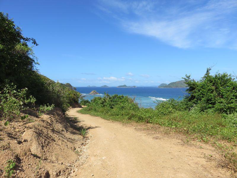 Chemin île de linapacan