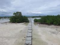 olango bird sanctuary