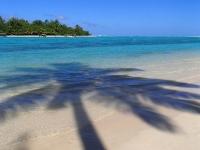 iles cook belle plage palmier rarotonga