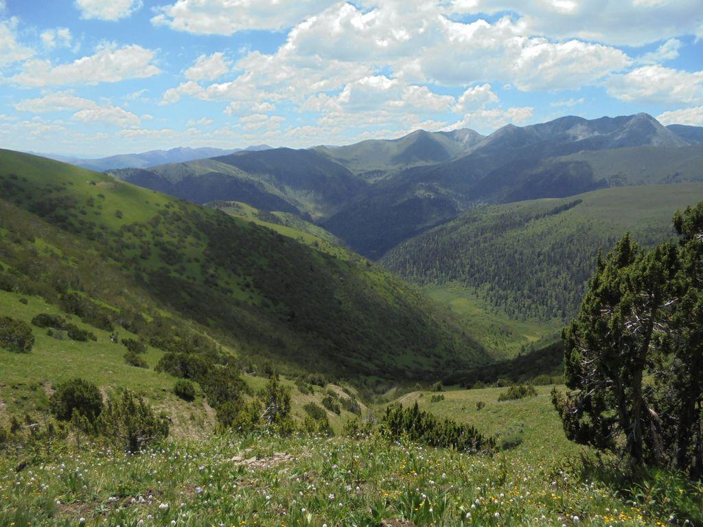 trek dzongsar palpung itinerary