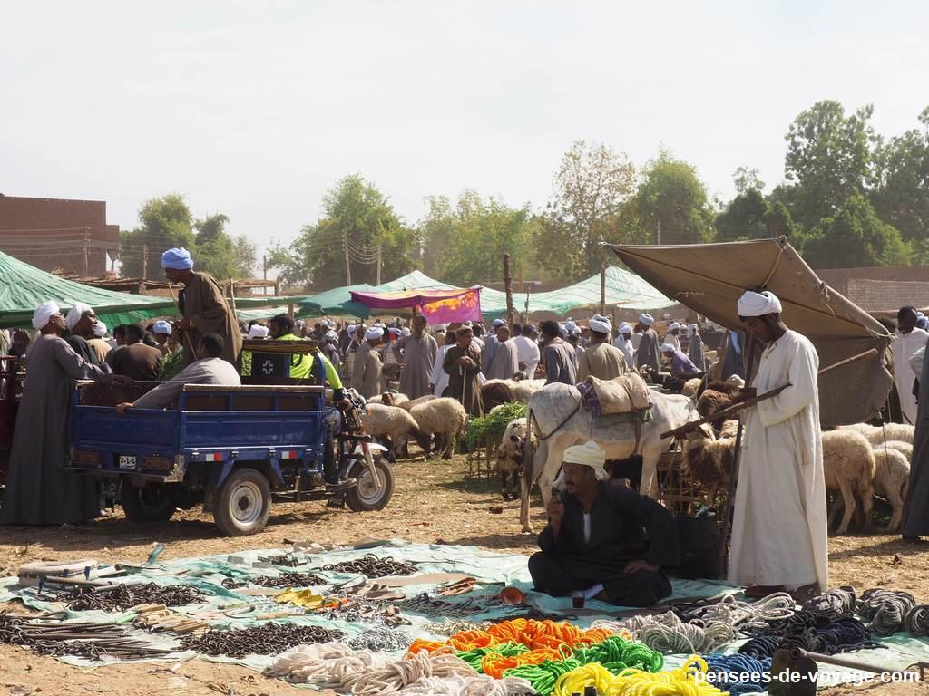 Le grand marché aux chameaux d'Assouan