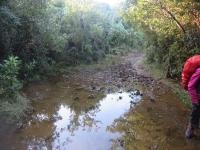 chemin boueux en randonnée