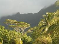 moorea montagnes randonnees autostop