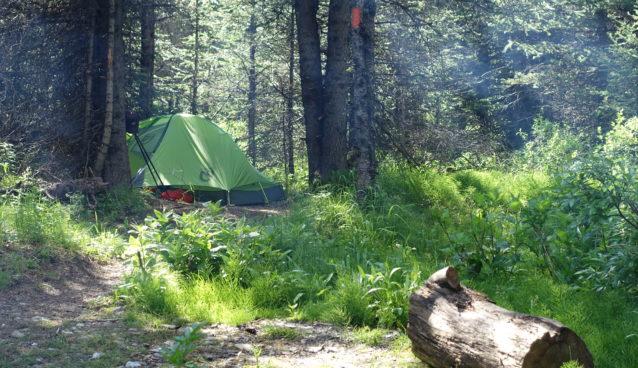 kananaskis camping